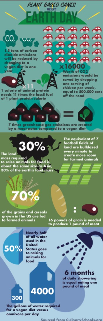 Earth Day Infographic University of Miami Plant Based Canes
