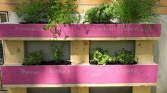 Der Paletten-Trick!: Dieses Kräuterbeet passt auf jeden Balkon #kräutergartenpalette