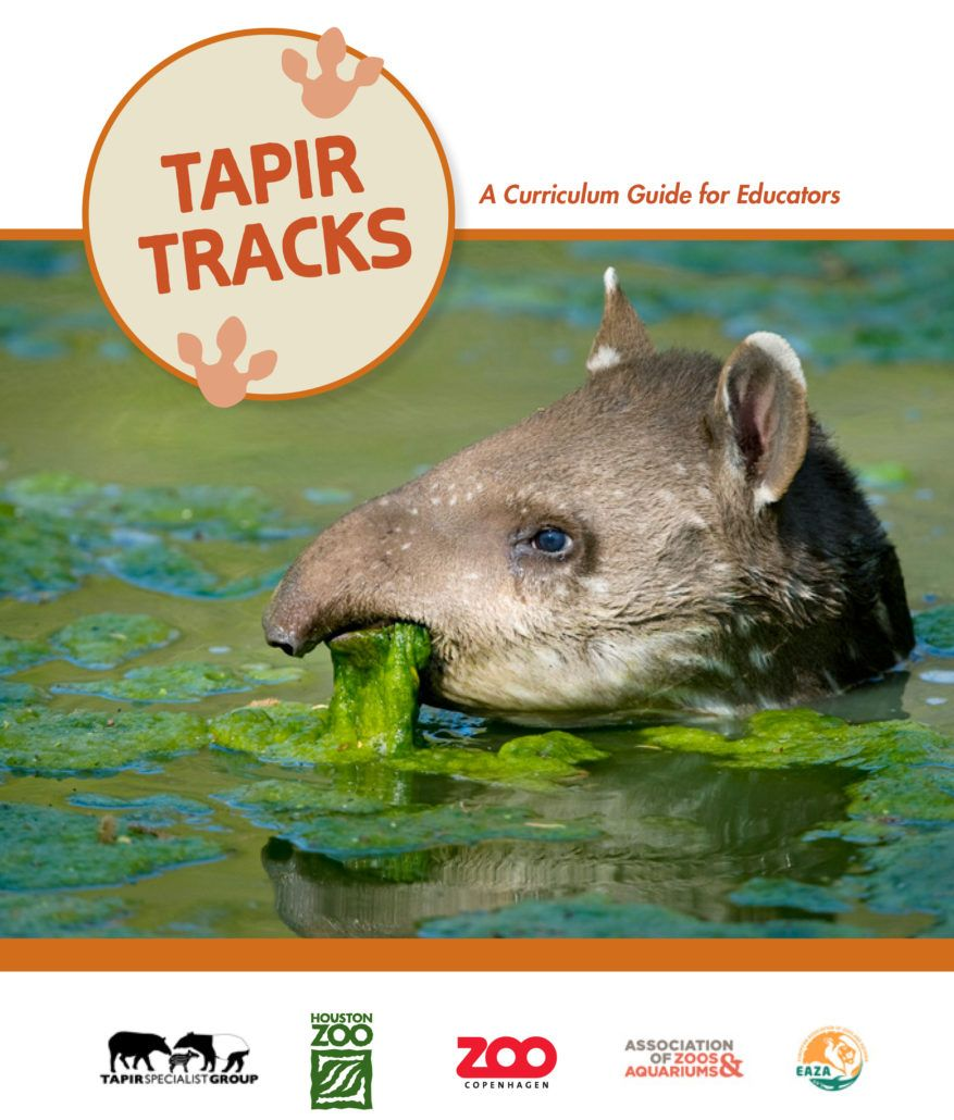 Download Tapir Tracks A Curriculum Guide For Educators Pdf Download Creative Writing Activities Science Learning Centers Learning Science