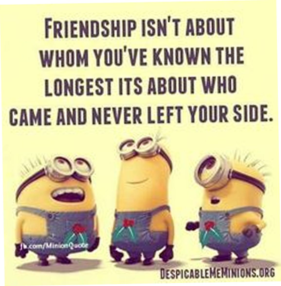 Serious Quotes About Friendship Today 22 New Funny Minions  Funny Minions  Funny Minions Quotes