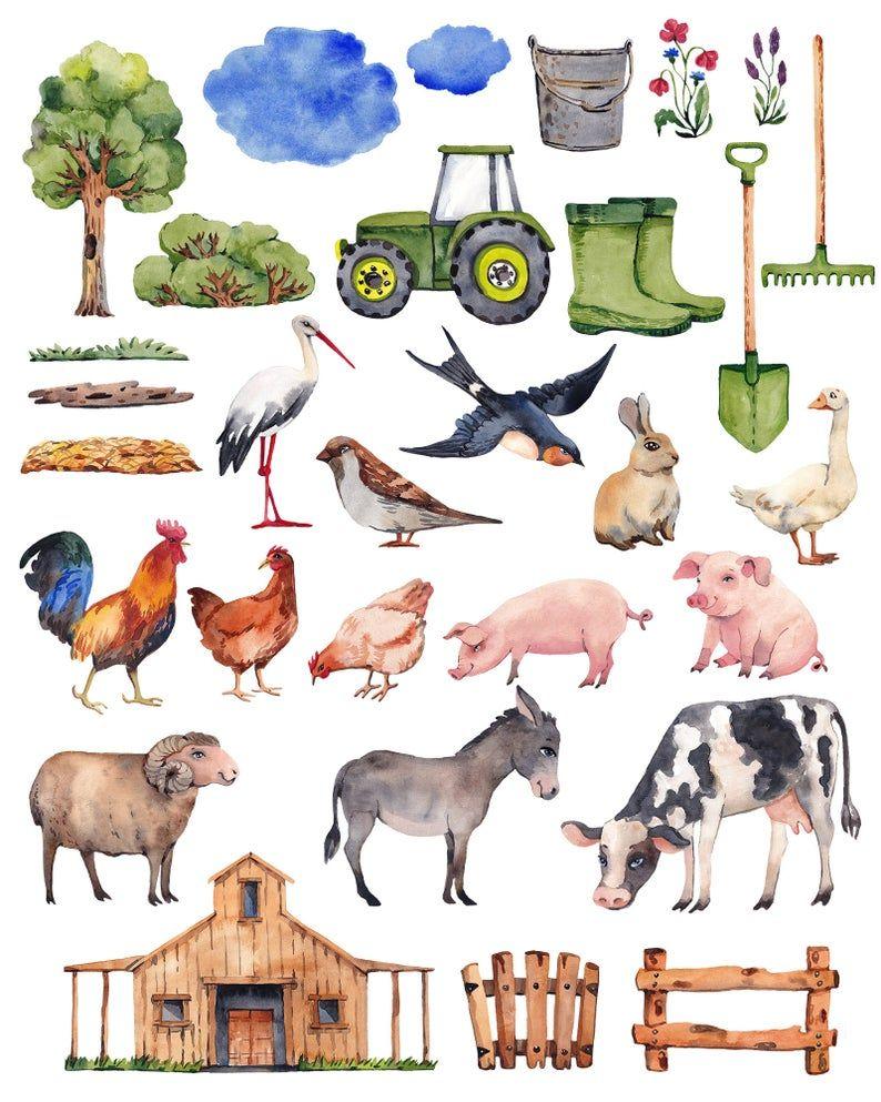 Farm Animal Clipart Watercolor Animal Clipart Farm Birthday Etsy In 2021 Farm Animal Clipart Farm Animals Watercolor Animal Clipart