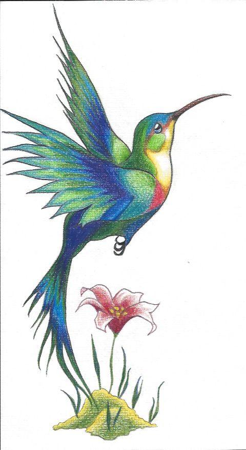 Hummingbird   Принты 2   Pinterest   Colibri, Pinturas de aves y ...