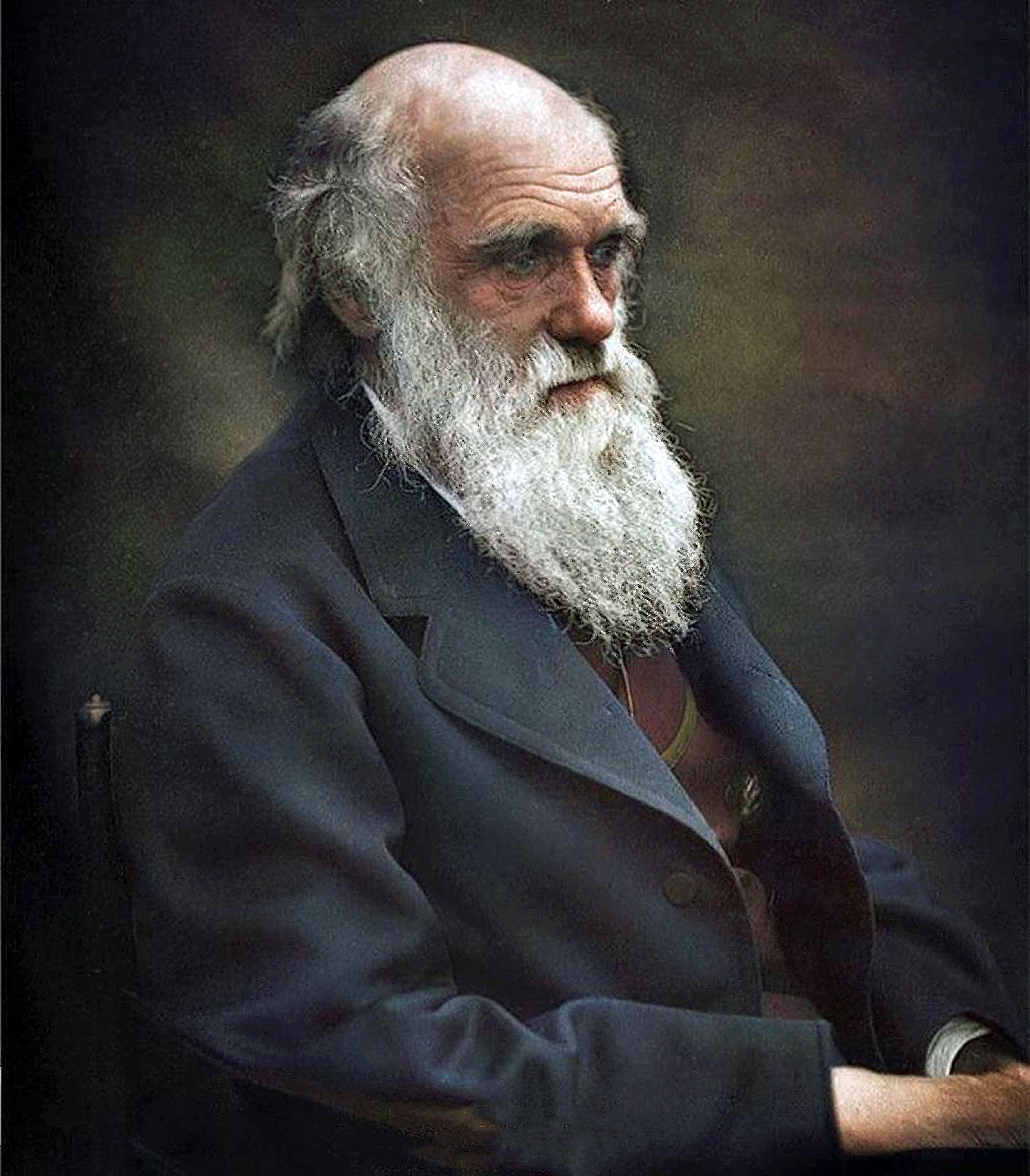 Charles Darwin (ca. 1874) | Charles darwin, Darwin, Naturalist
