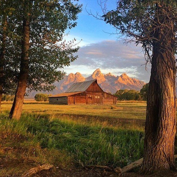 The T.A. Moulton Barn in Grand Teton National Park #USA - Photo by @drewtrush #interiors #interiordesign #architecture #decoration #interior #home #design #photogrid #bookofcabins #homedecor #decoration #decor #prefab #smallhomes #instagood #compactliving #fineinteriors #cabin #tagsforlikes #tinyhomes #tinyhouse #like4like #FABprefab #tinyhousemovement #likeforlike #houseboat #tinyhouzz #containerhouse by bookofcabins