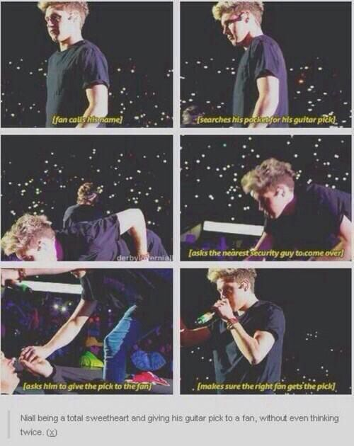 #93782627 to love Niall Horan