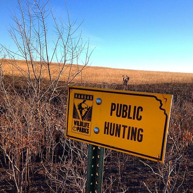 Wildrums Collective - Hunting Public Land in Private | hunt