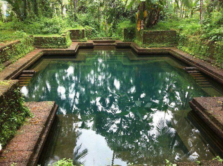 Wie viel darf ein Schwimmteich kosten? Schwimmteich kosten - kosten pool im garten