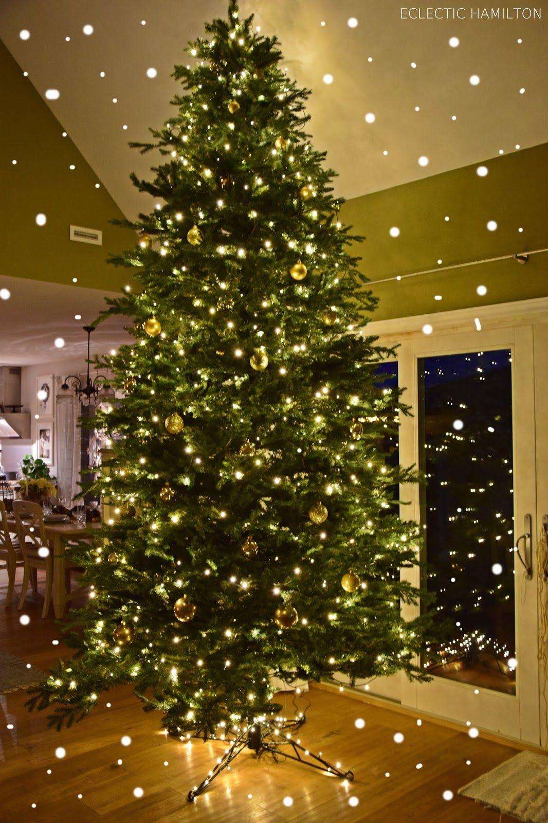 Endlich 4 meter golden glitzernder weihnachtsbaum mein blog eclectic hamilton dekoideen - Dekoideen weihnachtsbaum ...