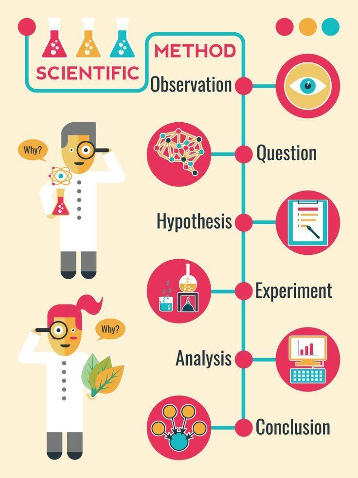 Illustration of Scientific Method Infographic Timeline Chart - scientific method worksheet