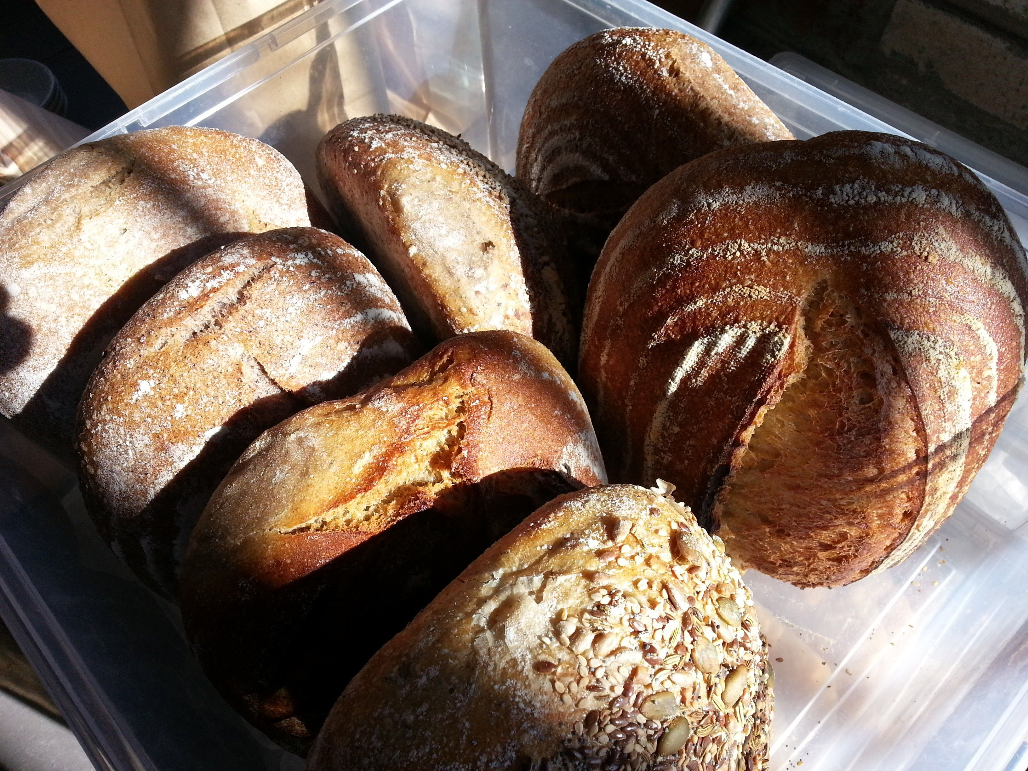 Sourdough loaves by Purebread, Winter Markets 2016 #ottawafarmersmarket #lansdownefarmersmarket