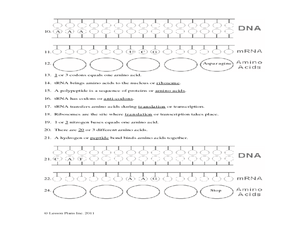 Protein Synthesis Worksheet Worksheet Math addition