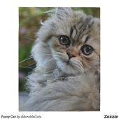 Furry Cat Jigsaw Puzzle