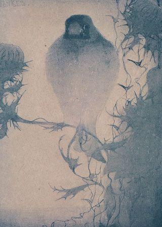 Jan Mankes, Puttertje op tak, 1910 ごしきひわ