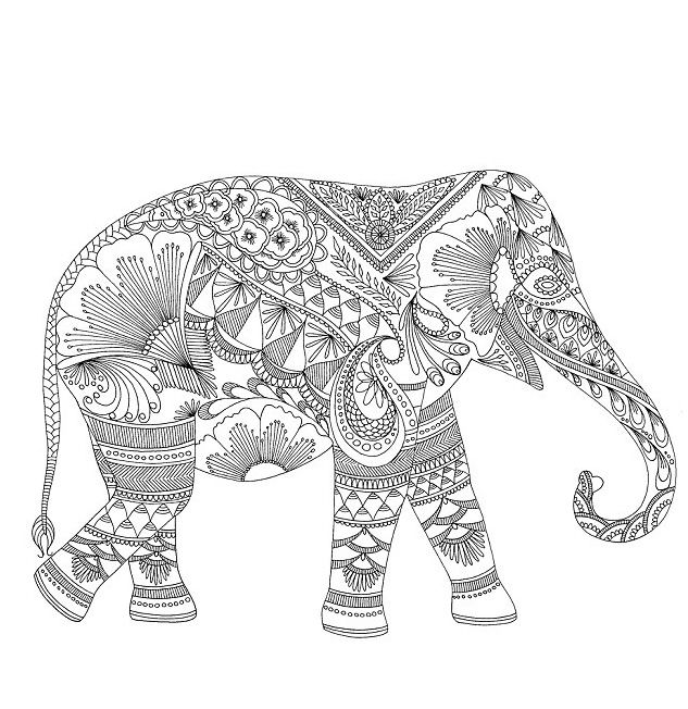 download elephant coloring pages for adults httpprocoloringcomelephant - Color Pages For Adults