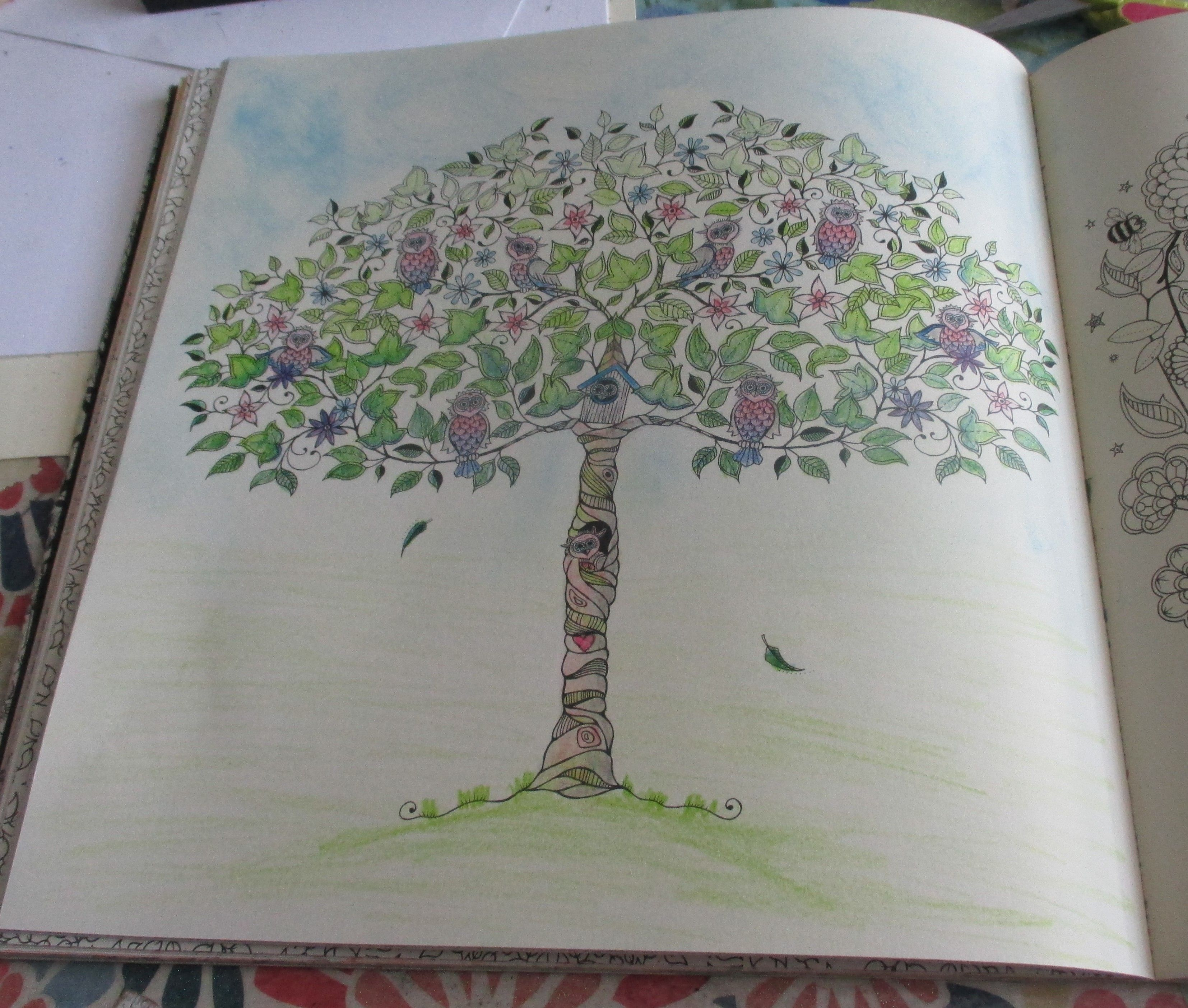 Secret Garden Tree With Owls Colored Koh I Noor Woodless Pencils