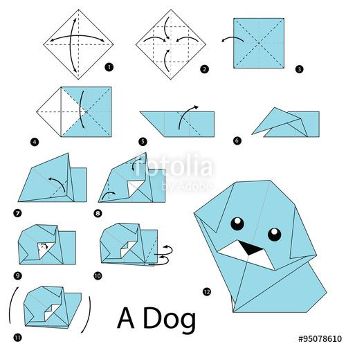 Photo of Vektor: step by step instructions how to make origami dog.