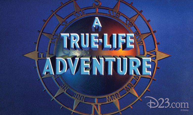 Live from D23's Destination D Amazing Adventures