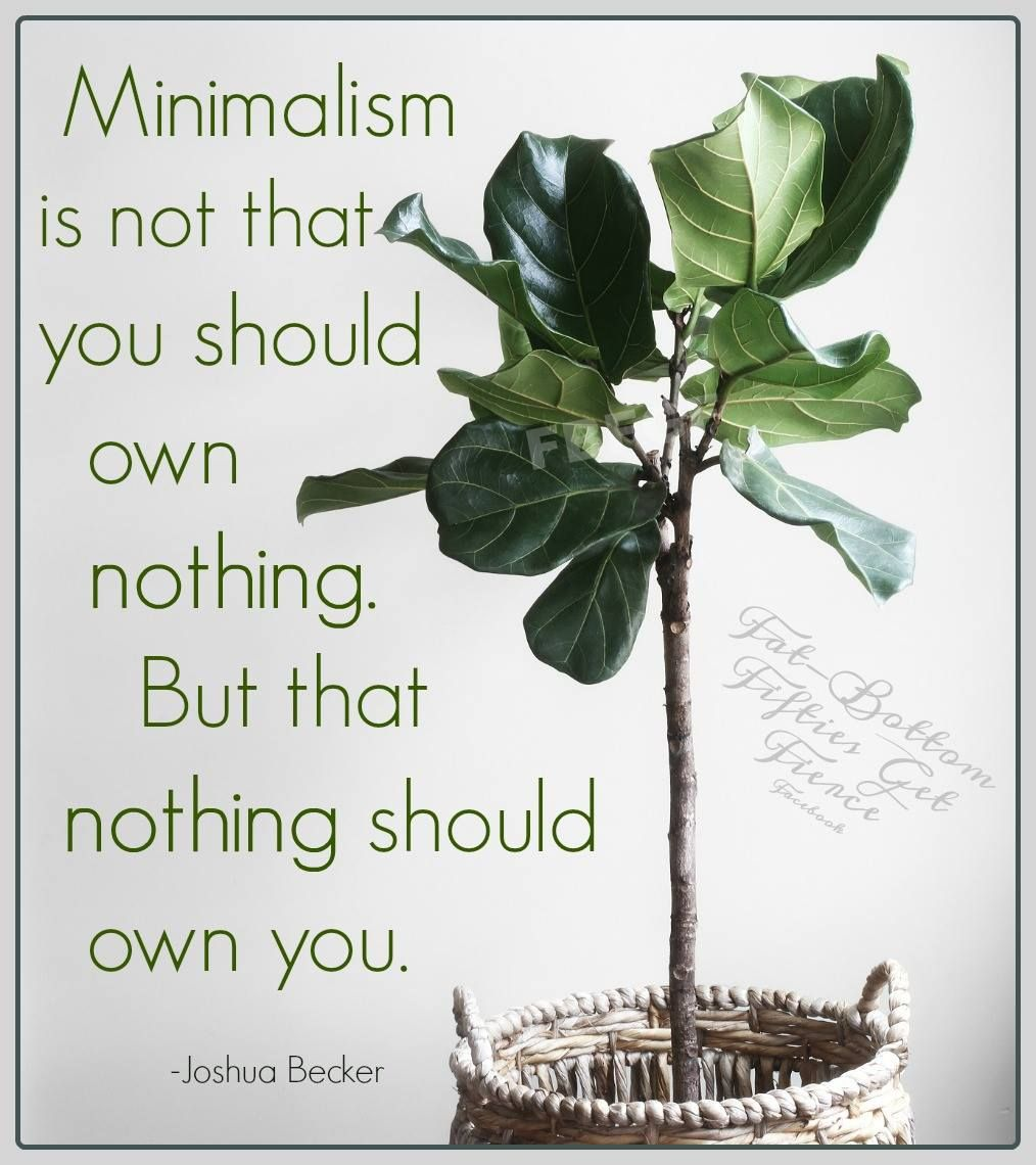 Pin by Patrice Farmer on Thought for the day Plants