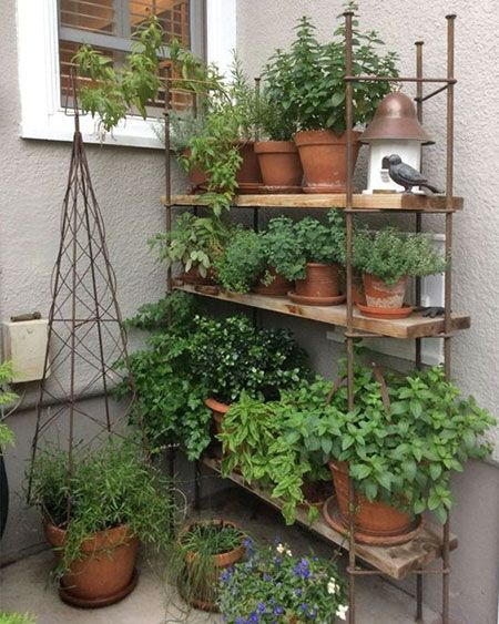 Even if your outdoor space is a small balcony, that doesn't mean you have to forget about gardening. You can establish a thriving herb and veggie garden in small spaces. #balconygarden