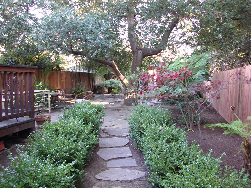 drought tolerant garden. Bountiful Botanicals, Inc. Sustainable, Drought Tolerant Garden Design, Oakland, California A