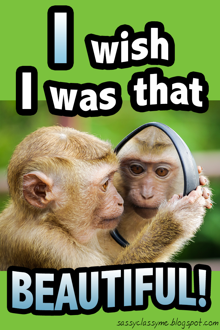 I Wish I Was That Beautiful Monkey Suuuper Cute Animals Memes Cute Quotes Sassyclassyme Beautiful Lo Funny Animal Memes Animal Memes Memes