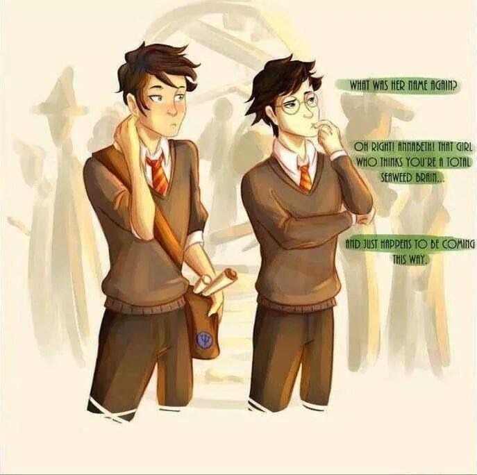 Percy Jackson Harry Potter Percy Jackson Fandom Percy Jackson Funny Percy Jackson Crossover