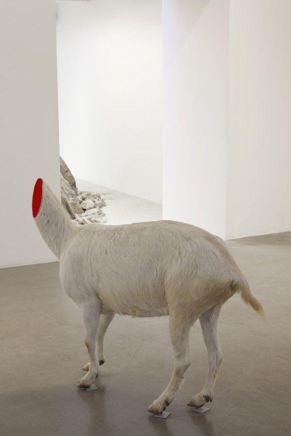 Huang Yong Ping at Kamel Mennour