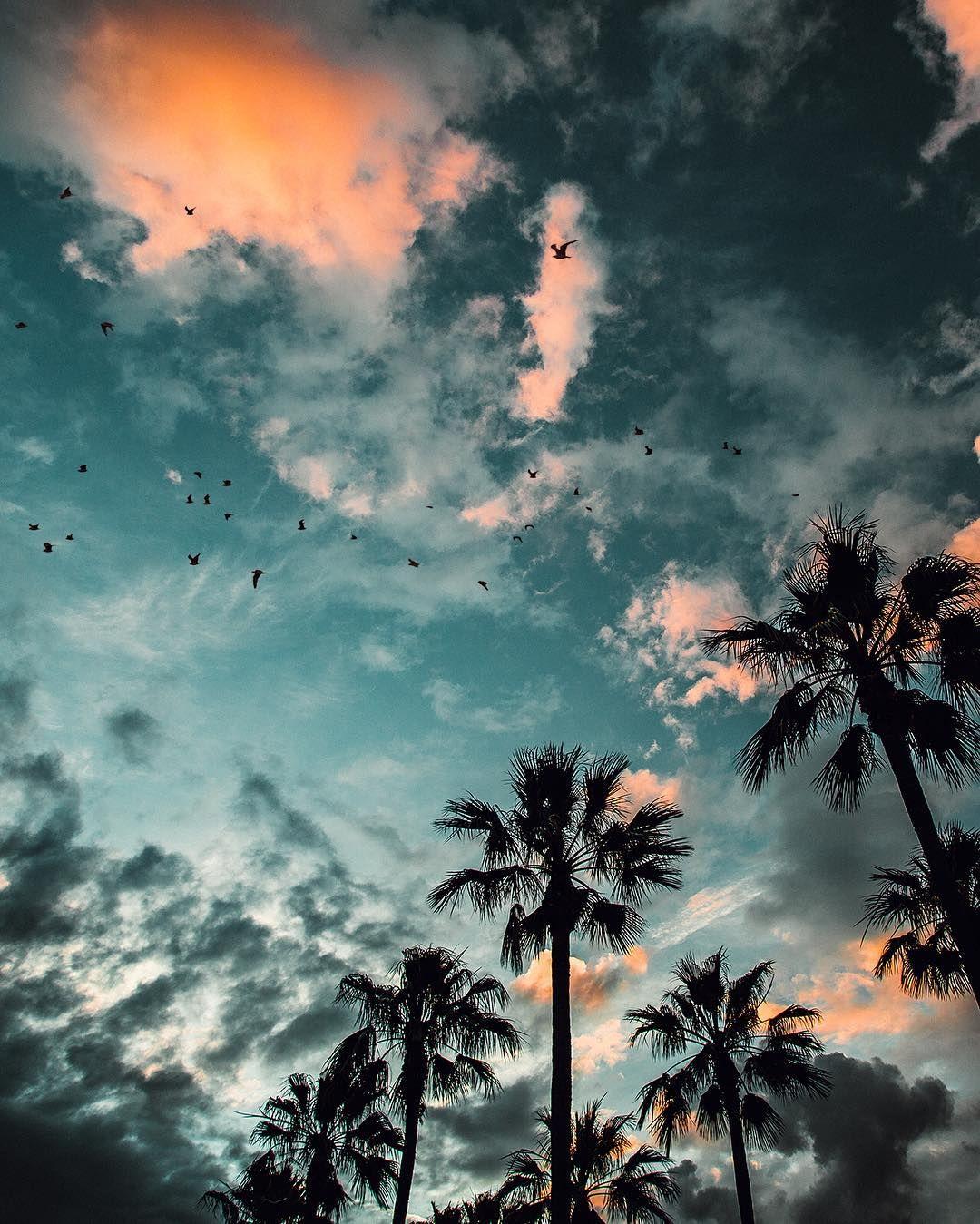 ryanlongnecker - Long Beach