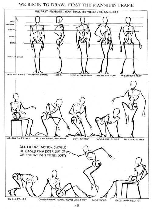 Andrew Loomis: Proporciones anatómicas y movimiento   Técnicas de ...
