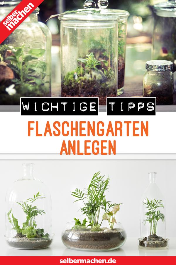 Flaschengarten: Leg dir deinen eigenen Dschungel für Zuhause an