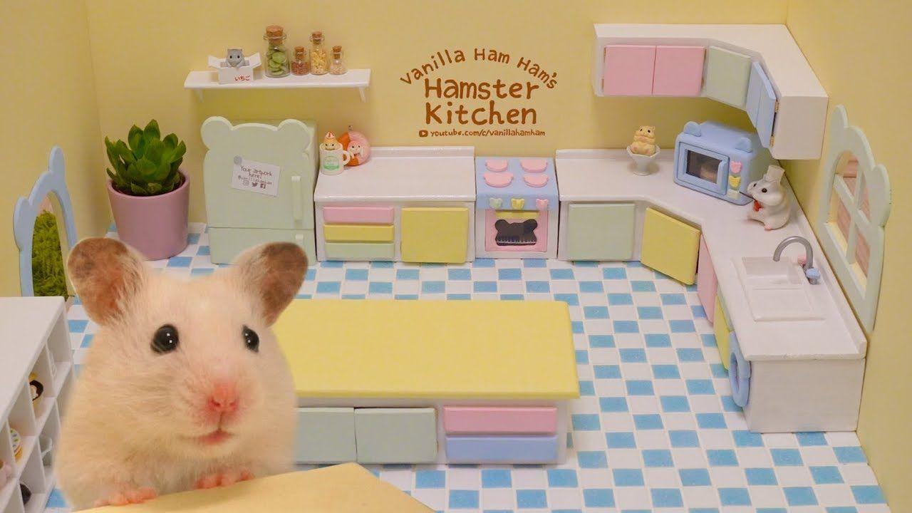 Building The Hamster Kitchen Part 1 Hamster Susses