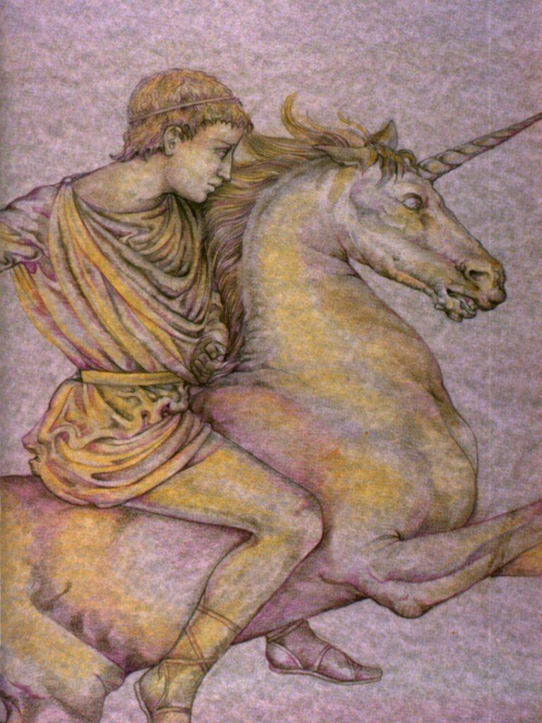 Bucephalus (artist unknown)