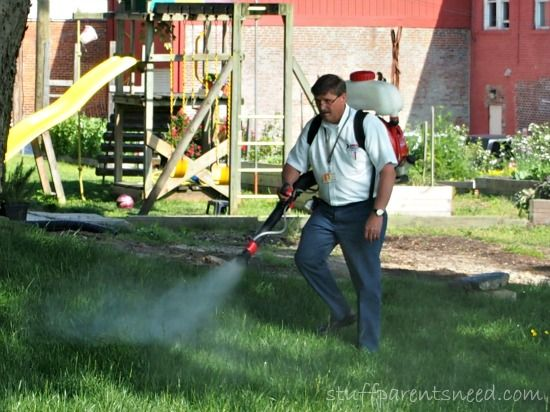 3 Tips To Get Rid Of Mosquitoes In Your Yard (Mosquito Treatment Advice) How