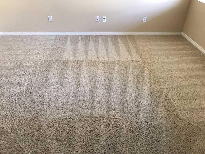 Safari Carpet Cleaning Bakersfield Ca In 2020 How To Clean Carpet Cleaning Upholstery Bakersfield