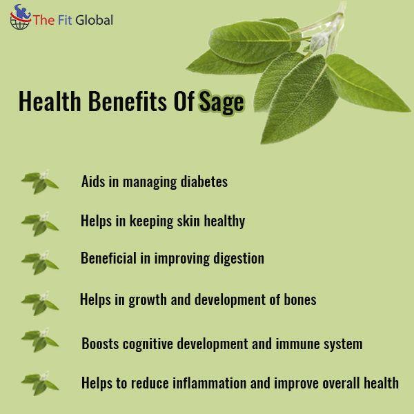 Health Benefits Of Sage #skincare #vegan #food #healthy # ...