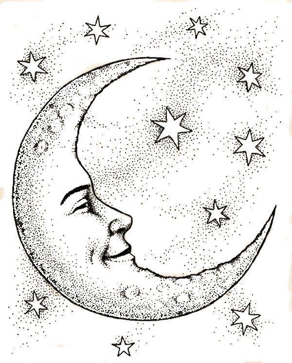 Naturally Moon