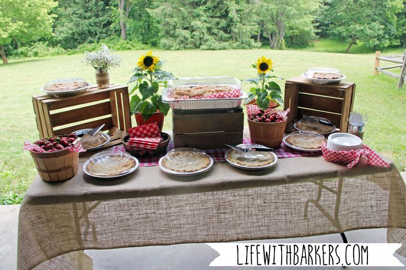 A Co Ed Rustic Country Backyard Park Bbq Barbeque Themed Baby Shower