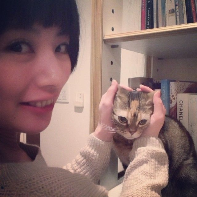水川あさみ 猫