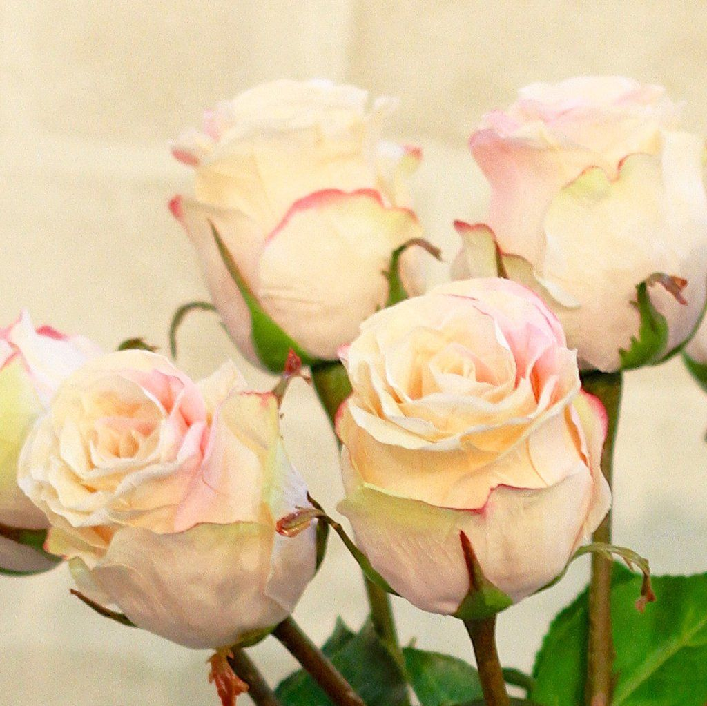 Pale pink large rose bud bunch of 6 stems rose buds pale pink luxury artificial fake silk flowers pale pink large rose bud lifelike realistic faux flowers buy online mightylinksfo Image collections
