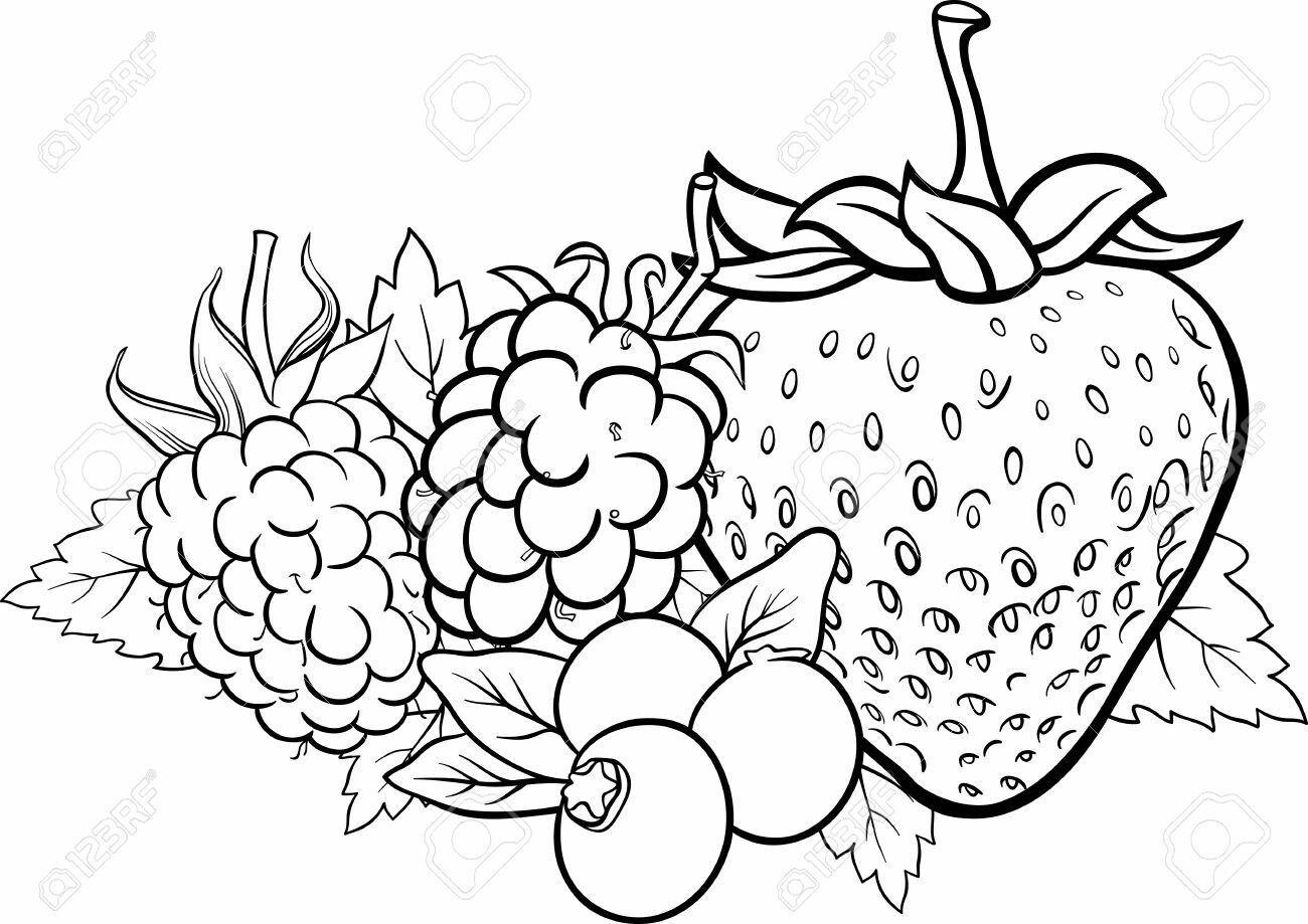 Belajar Menggambar Dan Mewarnai Buah Strawberry Untuk Si Kecil