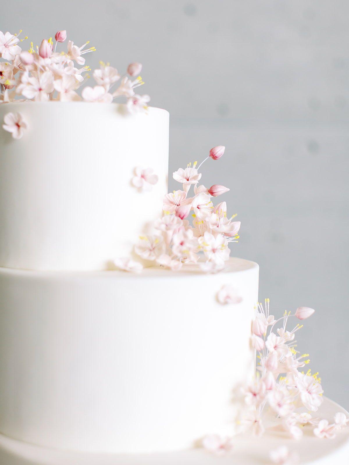 Modern Wedding Cake Cherry Blossom Cake Flour Flourish Rachael Ellen Events Cherry Blossom Wedding Cake Cherry Blossom Wedding Wedding Cake Decorations