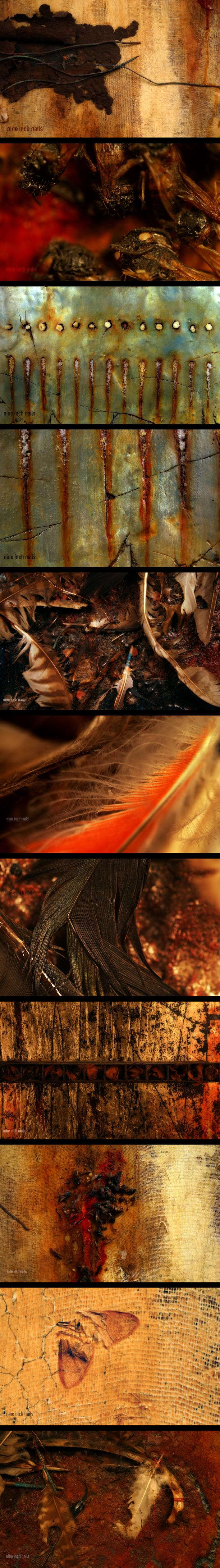 Nine Inch Nails - The Downward Spiral album art | Nine Inch Nails ...