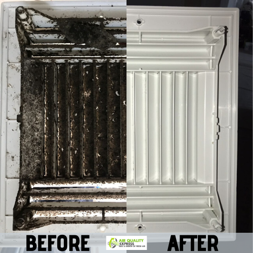 Before / After mold remediation in 2020 Mold remediation
