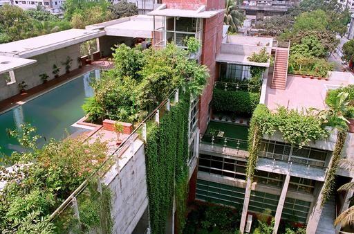 Architecture Vegetale Au Bangladesh Facade Verte Jardin Sur Le