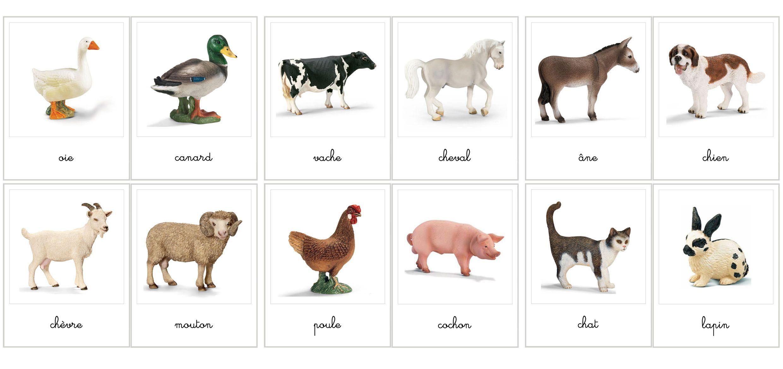 Animaux de la ferme montessori printables pinterest - Images d animaux de la ferme ...