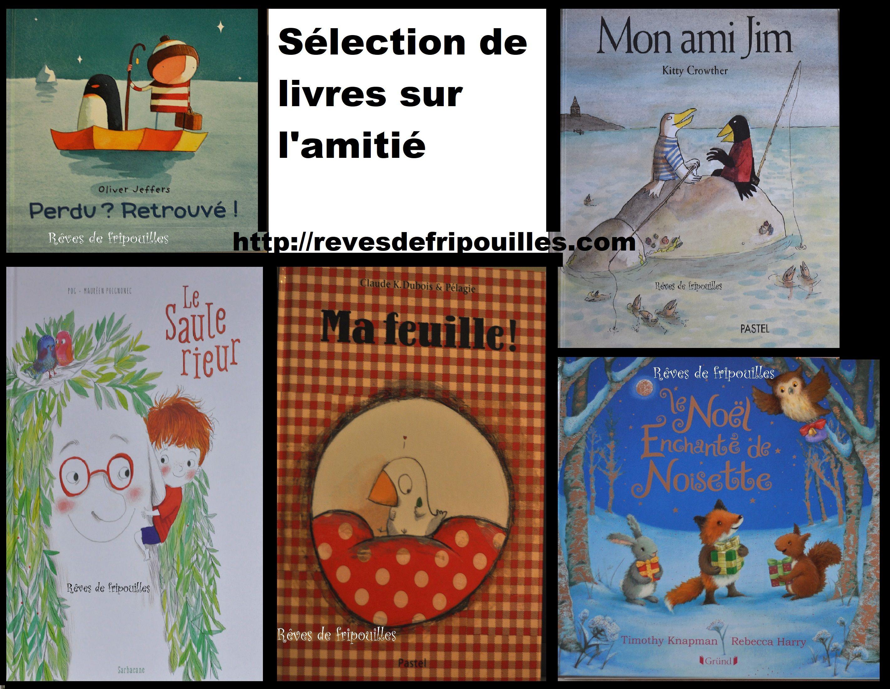 Retrouvez Ma Selection De Livres Sur L Amitie Sur Le Blog Http Revesdefripouilles Com Amitie Livres Livresenfants Litte Livre Amitie Litterature Jeunesse