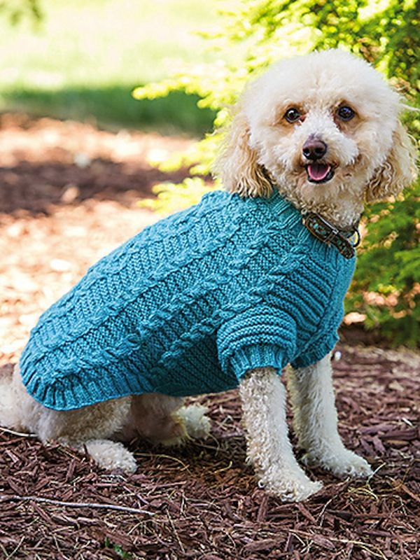 15 Knitting And Crochet Patterns To Keep Your Pet Warm Crochet