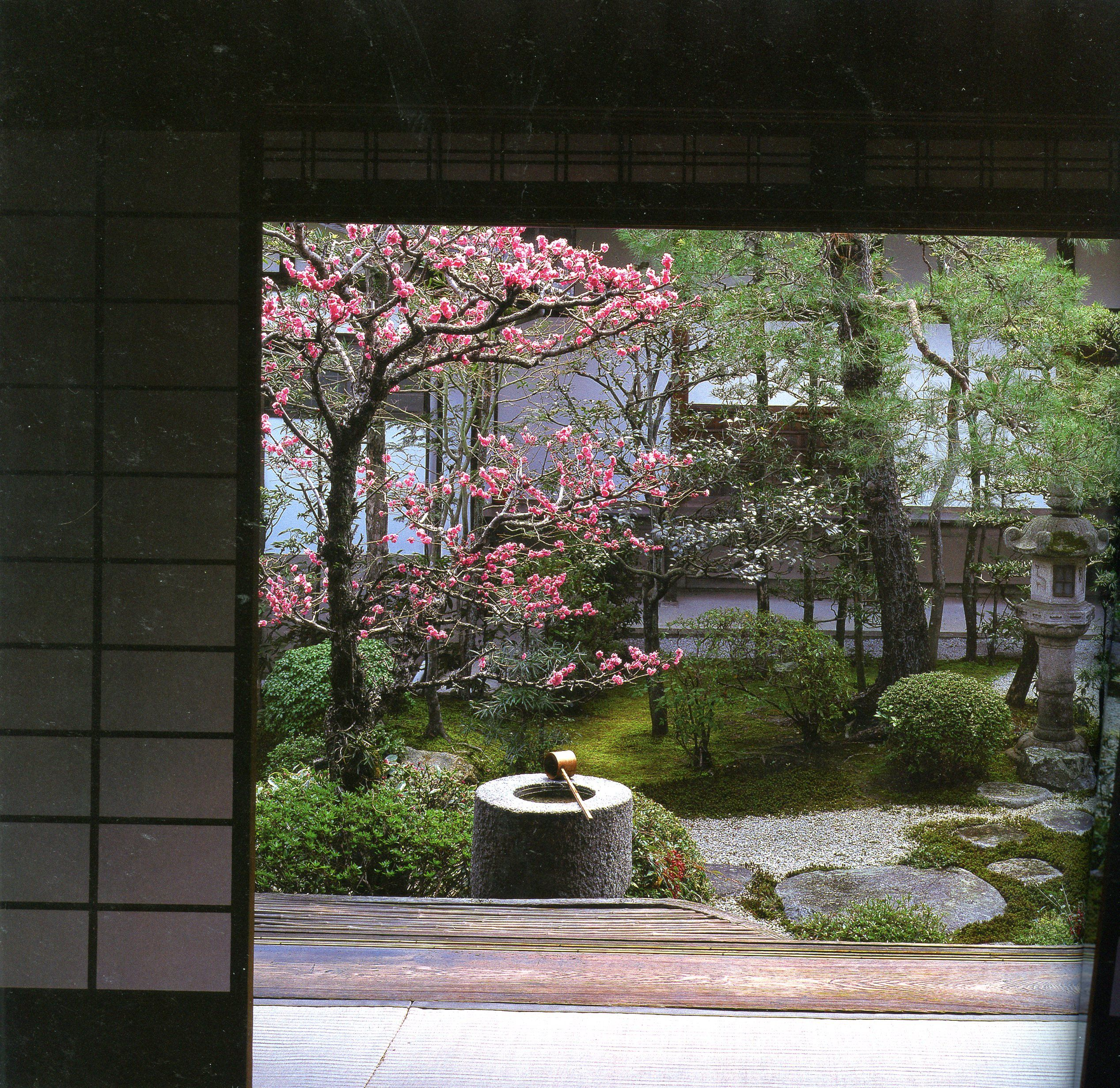 93a10d3d5130817a975adfd552f93330 - Landscapes For Small Spaces Japanese Courtyard Gardens