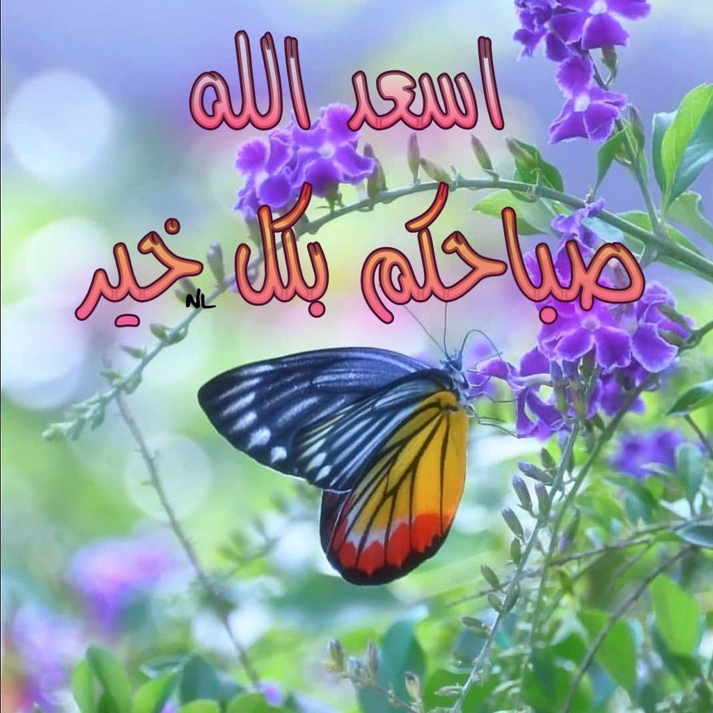 اسعد الله صباحكم بكل خير Heart Pictures Morning Greeting Pictures