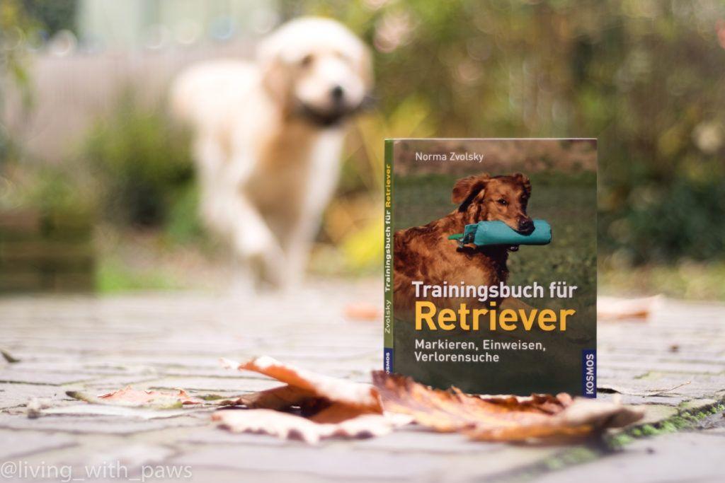 Trainingsbuch Fur Retriever Mit Bildern Bucher Training Gesundheit Und Fitness